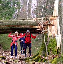 Frankenweg von  Lillinghof nach Engelthal