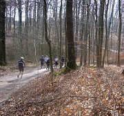 Bad Salzuflen - Marathon 2008