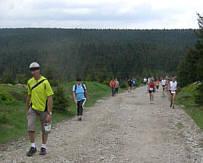 Rennsteig - Supermarathon 2008