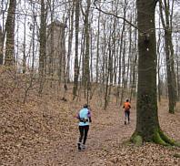 Fürther Stadtwaldlauf am 27.03.2010