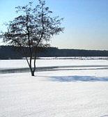 Rothsee-Lauf 2010