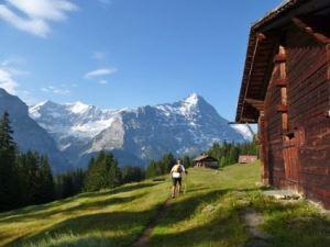 Eiger Ultra 2013