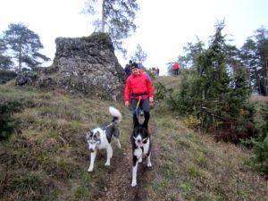 Genusslaufmarathon am 23.11.2013