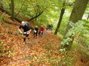 Trail Marathon Heidelberg 2013