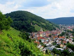 Blick auf Klingenberg mit Burgruine beim Landesorientierungslauf 2014 Tag 2