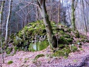 Joggingtour im Spessart am 24.03.2014 zum h�chsten Berg des Spessarts