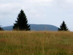 Unterfr�nkischer Orientierungsultralauf vom 02.08 - 03.08.2014