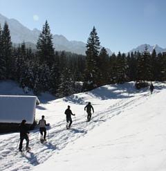 Das Kranzbach - Bewegung im Winter