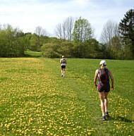 Gute Gründe zu laufen